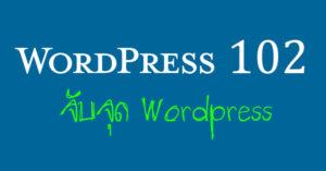 จับจุด WordPress
